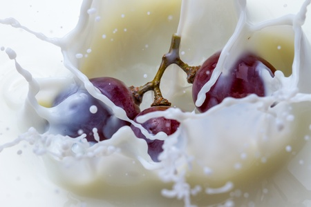 Splash of milk and dark grape Stock Photo - 13139030