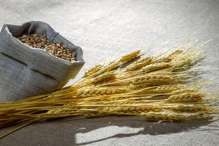 threshing: Closeup wheat seed on canvas