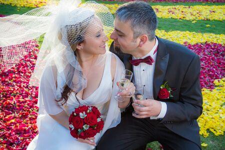 Lovers celebrate their wedding Stock Photo - 14119296