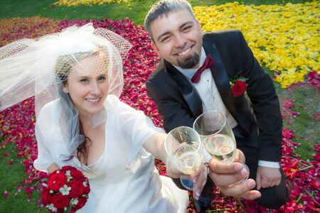 Bride and groom makes a toast with champagne Stock Photo - 14119492