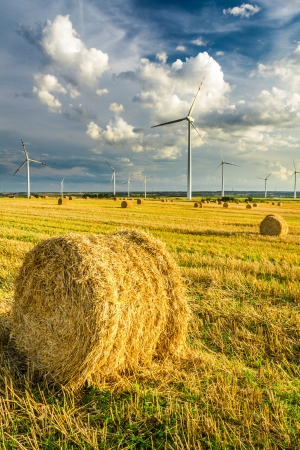 Windmills generating green energy photo