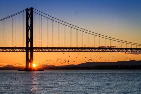 Birds flying at sunset under the bridge in Scotland photo
