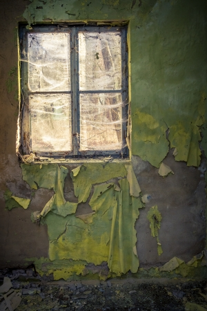 mold: Ruined room in abandoned building