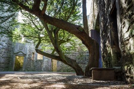 De ingang van de binnenplaats van een stenen kasteel Stockfoto