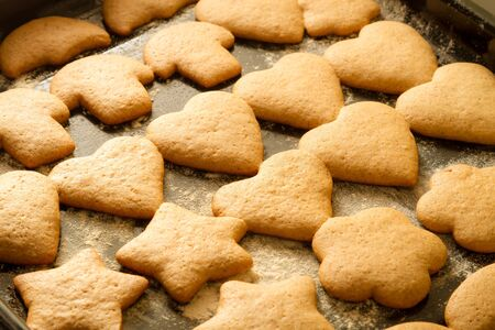 Freshly baked gingerbread cookies Stock Photo - 15963910