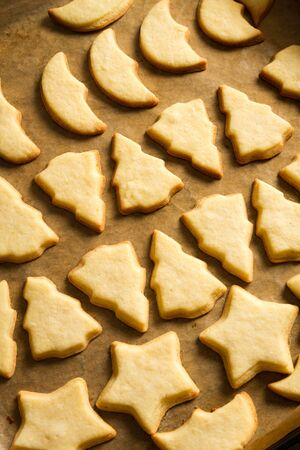 Freshly baked Christmas cookies on a baking tray Stock Photo - 15963642