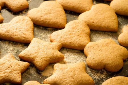 Baked homemade gingerbread cookies photo