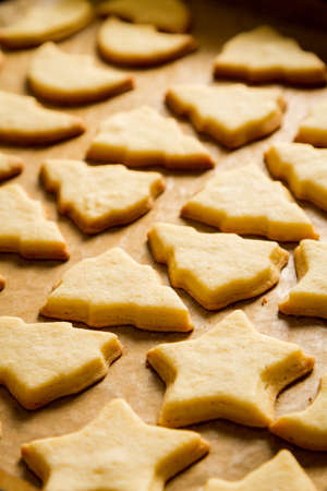 Closeup baked homemade cookies on a baking tray Stock Photo - 16272236