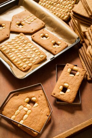 Baked gingerbread cottage components Stock Photo - 16397557