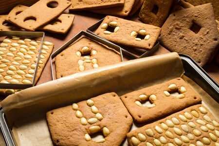 Freshly baked gingerbread cottage components Stock Photo - 16397498