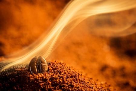 grano de cafe: Primer uno los granos de caf� quemados