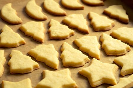 Closeup baked homemade cookies on a baking tray Stock Photo - 16823913