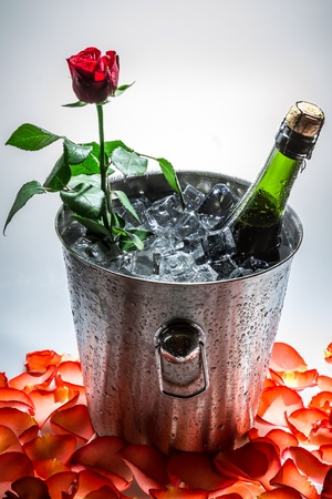 Red rose and cold champagne for Valentines Day photo