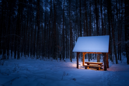 Warm shelter in a cold winter forest photo