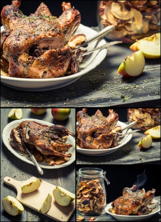 Roasted meat with dried fruit Stock Photo - 18155479