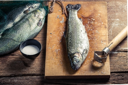 fish husbandry: Closeup of freshly caught fish for dinner Stock Photo