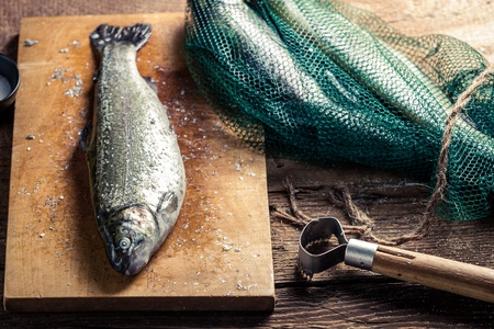 fish rearing: Freshly caught fish in the net for dinner Stock Photo
