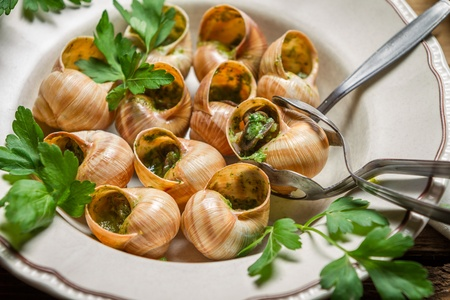 Closeup of fried snails with garlic butter photo