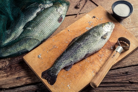 fish husbandry: Preparing trout for dinner in the countryside
