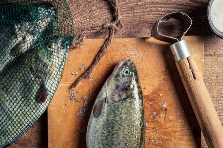 Closeup of preparing freshly caught dinner Stock Photo - 18889612
