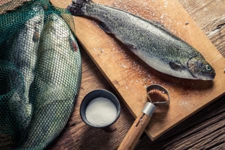fish rearing: Preparing fish caught in freshwater