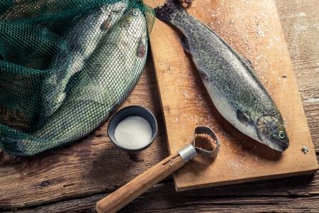 fish rearing: Freshly caught fish for dinner