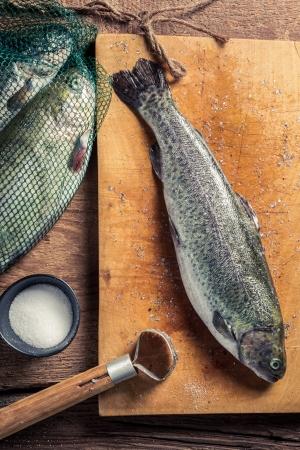 fish rearing: Preparing freshly caught trout