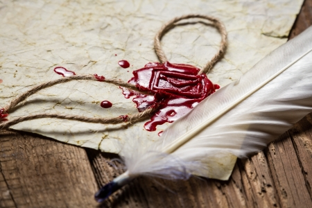 Closeup of a feather and red sealing wax Stock Photo - 19439476