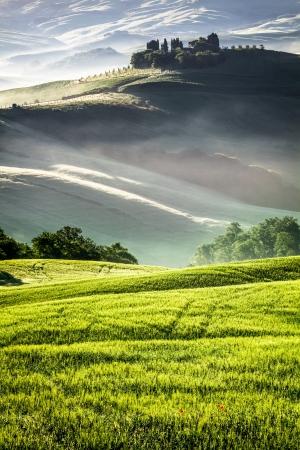 agriturismo: Morning sun warming the Tuscan fields