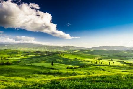 Piękny widok na zieloną dolinę na zachodzie słońca, Toskania