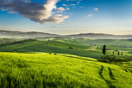 Green valley at sunset in Tuscany photo