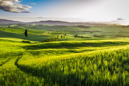 agriturismo: Rising fog in the valley at sunset, Tuscany Stock Photo