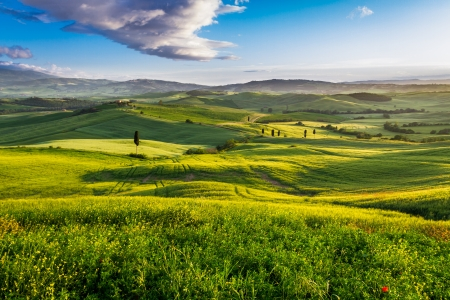 Green valley and mountains at sunset in Tuscany photo
