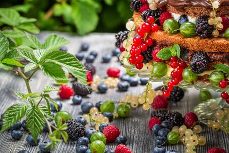 Closeup of cake wild fresh berry fruits in forest photo