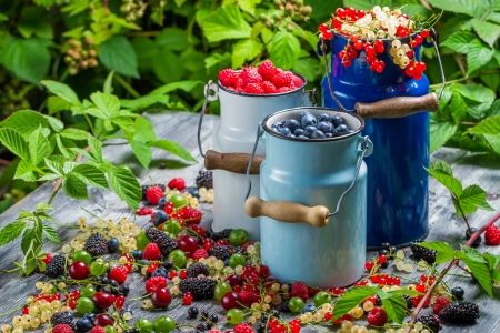 Freshly collecting wild berry fruits