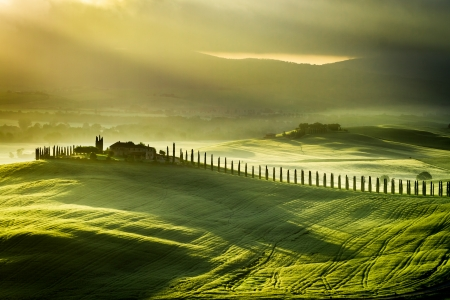 Sunrise at San Quirico d'Orcia photo