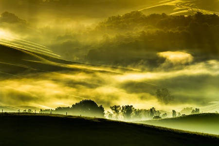 Morning fog in the valley of the Tuscan photo