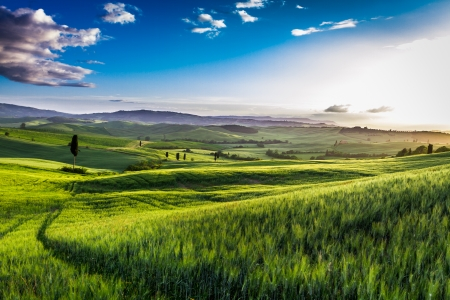 rolling landscapes: Rising fog in the valley at sunset, Tuscany Stock Photo