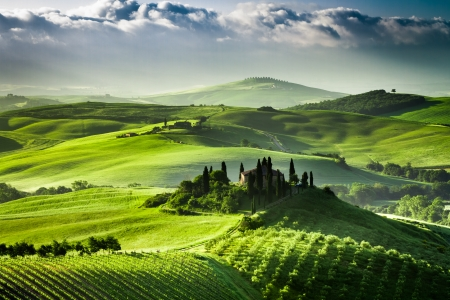 Sunrise over farm of olive groves and vineyards in  Tuscany photo