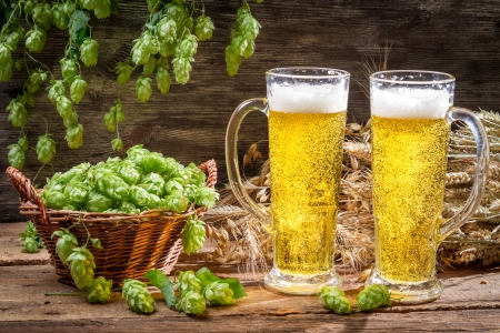 Cold beer surrounded by hops cones Stock Photo - 22171783
