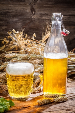 Golden beer made of wheat and hops Stock Photo - 22171784