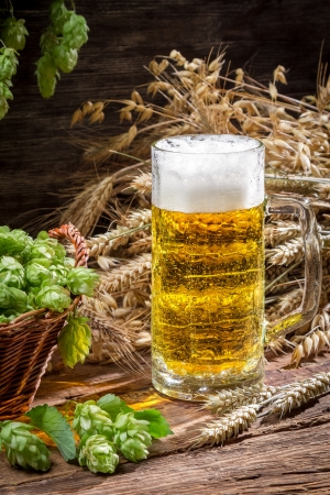 Fresh cold beer with a large foam Stock Photo - 22171785