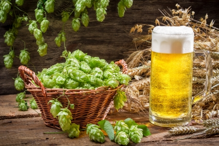Basket full of hops and a cold beer Stock Photo - 22171786
