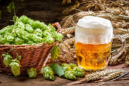 Small beer with a large foam surrounded by hops Stock Photo - 22171788