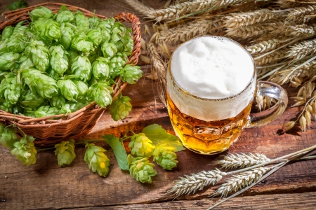 Cold beer made of fresh ingredients Stock Photo - 22171789