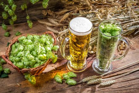 Hops and grains as ingredients for beer Stock Photo - 22171798