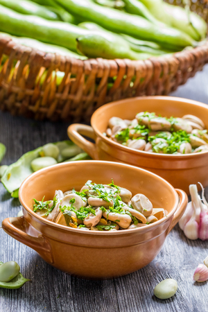 Closeup of broad beans served with parsley Stock Photo - 22487289