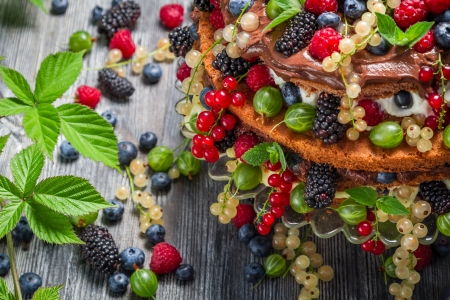 Cake made of wild berries photo