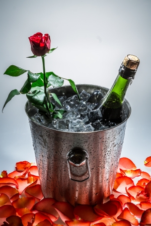 Closeup of red rose and cold champagne photo