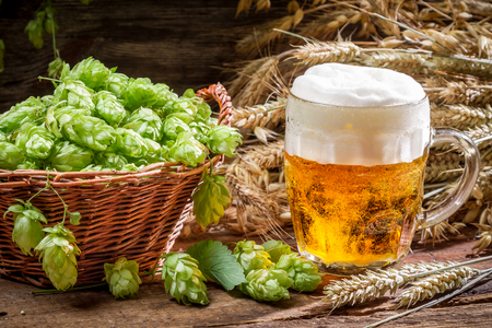 Small beer with a large foam surrounded by hops Stock Photo - 22586207